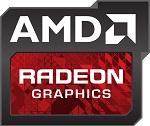 AMD-Radeon-R9-390X-WCE-2