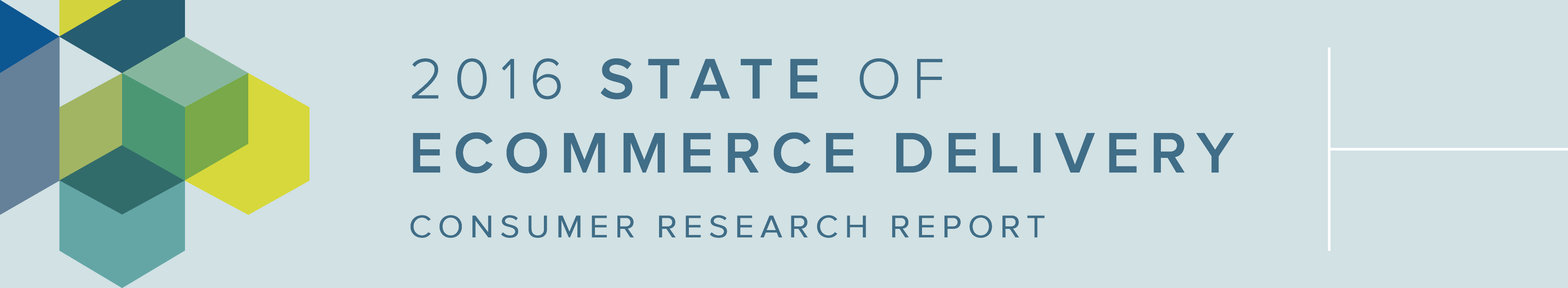 2016_state_ecommerce_delivery_metapack_report-1